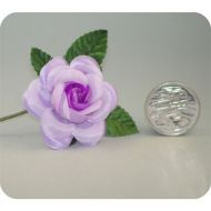Mauve Med. Open Rose