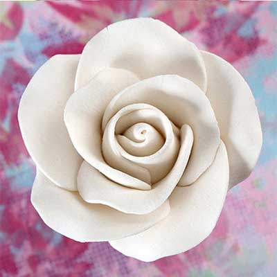 White Medium Tea Rose